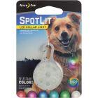 PET SPOTLIT_753960